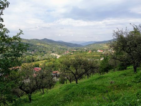 Râul Drajna